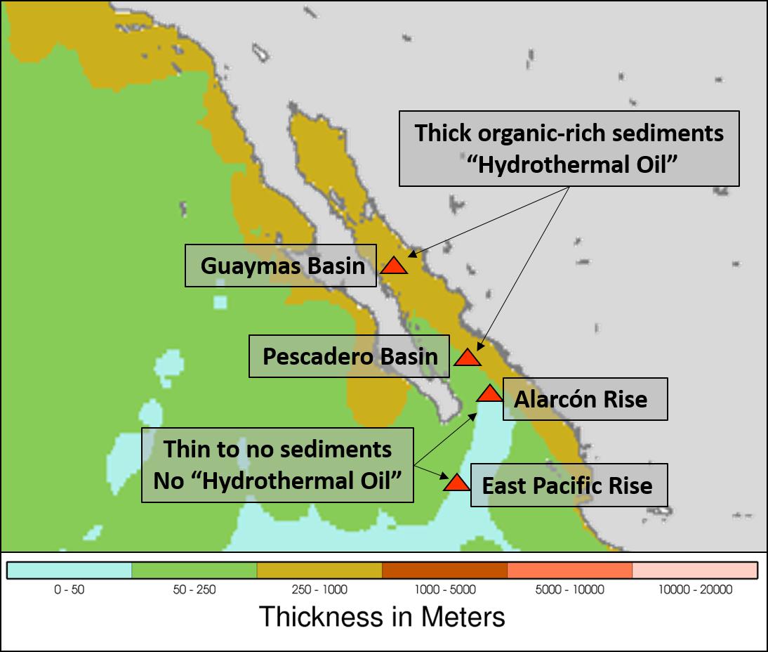 Hydrothermal oil